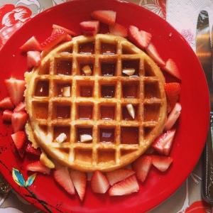 Homemade waffles with strawberries and maple syrup. I am one lucky puppy mommy!