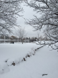 Beautiful but snowy, slushy and icy run through Wash Park.