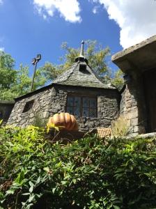 Hagrid's hut was on point!