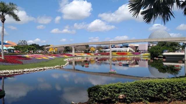 STUNNING - this is a gorgeous time of year to go to Epcot!
