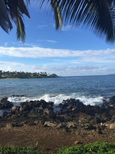 The amazing view from the coastal trail, the Wailea Beach path, that stretched from Wailea's Andaz Resort to the Polo Beach Club. I would run between a 5K and 4 miles each morning.